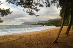 Pounders Beach_4190 (Jay Hyer) Tags: hawaii oahu beach sunrise northshore