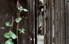 Search (Evangelina Balitskaya) Tags: castle travel derelict london