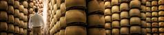 Sanctuary of Cheese (Pietro Faccioli) Tags: caseificio cheese consortium cow craft craftmanship emilia factory food genuine handmade italian italy manufacture maturation milk mould parmesan parmigiano parmigianoreggiano production quality reggioemilia storehouse taste tradition traditional wheel ageing warehouse cellar pietrofaccioli faccioli pietro