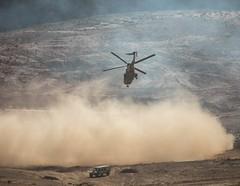 (Royal Hashemite Court) Tags: jordan kingabdullahii kingabdullah military