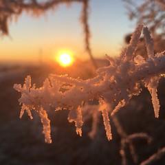 Sonnenschein (lippold.tobias) Tags: kalt reif eis himmel sunset sonnenaufgang sonnenschein sonne wetter