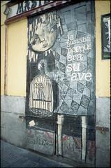 2016 (uno900) Tags: streetartmadrid graffitimadrid arteurbanomadrid graffiti madrid street art arte urbano graffitis espaa spain malasaa diego ingold legustabaporqueerasuave le gustaba porque era su ave suave
