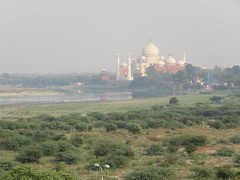 2016-11-04 Taj Majal view from Agra Fort across Yamuna River (Travel With Olga) Tags: tajmahal india agra mosque islam religion tomb mausoleum crypt mughal mogul mongol architecture monument cenotaph marble smog pollution monkey pools islamicart sandstone shahjahan mumtaz love lovers