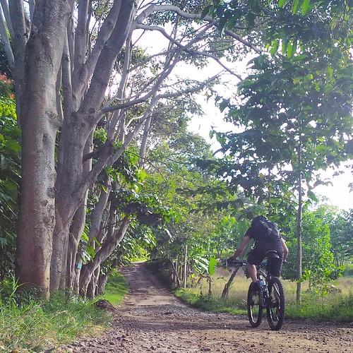 The last 1.5 km climb to Tebing Keraton