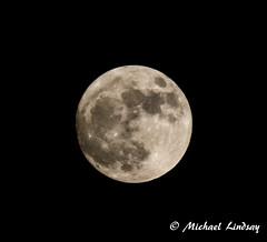 Super Moon 2016 (LilGoose10) Tags: moon super nighttime night nikon d7100 astrophotography