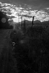 DSCF3081 (Galo Naranjo) Tags: guasca cundinamarca colombia amanecer sunrise cerca fence alambredepuas