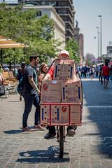 Pedaleando Teatinos-2.jpg (Claudio Olivares Medina) Tags: codipra huevos santiago bicicleta verano bicilogistica