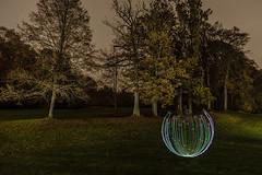 EMD #281 - Autumn Mood (1) (Electrical Movements in the Dark) Tags: lightartperformancephotography lapp lightart electricalmovementsinthedark emd lightpainting longexposure