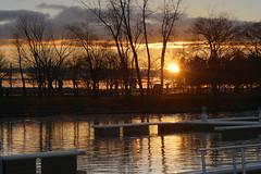 Marina (Zingarella1) Tags: sundown sun sunset trees branches sky reflections waves boardwalk