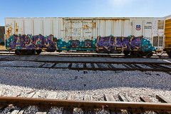 (o texano) Tags: houston texas graffiti trains freights bench bencing helm fume wh