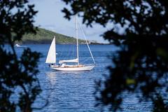 IMG_0455 (katlion01) Tags: bvi british virgin islands sail boat