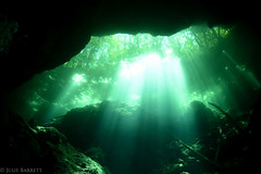 My Green Dream (jcl8888) Tags: cenote scuba diving yucatn mexico cavern cave underwater green nikond7200 tokina 1017mm nauticam naturallight sunbeams lightrays adventure freshwater ancient mayan natural nature highiso noise grain