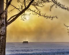 Foggy Sunrise (sibnet2000) Tags: columbiariver fog canon5dmarkiv canonef1635mmf40l nikhdrefexpro nikcolorefexpro topazadjust easternwashington richlandwa