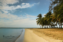 Loquillo Beach (Photos By Bill in WV) Tags: puerto beach san sun sandy sand beaches sky clouds palm palms trees tree ocean sea water nature nautical marine blue green cloud cloudy skies waters lovely scenic scenery landscape island islands caribben caribbean