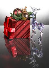 Christmas Fun (Daniel Knight Photography) Tags: christmas flash canon