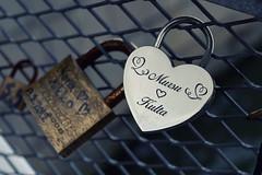 Love locks 💙 (L.Lahtinen (nature photography)) Tags: locks love nikond3200 bokeh 7dwf dof depthoffield finland suomi helsinki bridgeoflove rakkaudensilta lemmenlukkoja symboloflove naturephotography nikkor europe