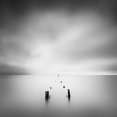 Seven. Pier structure, Sausalito California, USA 2014. (Thibault Roland) Tags: ocean california ca longexposure sea blackandwhite bw usa cloud lighthouse beach monochrome clouds landscape photography pier us photo sticks photographer unitedstates image jetty sony unitedstatesofamerica fineart shift photograph le roland poles minimalism nuages tilt sausalito minimalistic fineartphotography 2014 tiltshift longueexposition landscapephotography expositionlongue firecrest a7r canonblackandwhite landscapephotographer fineartphotographer thibaultroland seascapephotographer 16stops formatthitech sonya7r wwwthibaultrolandcom