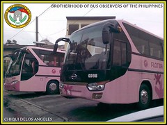 Pink Coaches (BBOP.Official) Tags: bus laoag bbop gvflorida provincialbus