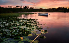 Loch Rusky Surprise (Damon Finlay) Tags: water sunrise dawn scotland boat colours fuji loch fujinon stirlingshire xe1 rusky f284 lochrusky fujixe1 xf1855mm xf1855mmf284