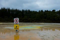 Jean Batten Geyser (arthurhs) Tags: newzealand rotorua geyser geothermal waiotapu thermalwonderland jeanbattengeyser