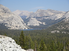DSC03155 (cwright17) Tags: yosemite olmsteadpoint