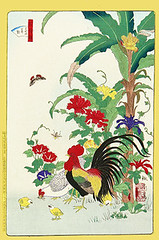 Japanese banana, Japanese morning glory, unknown flowers and domestic fowl (Japanese Flower and Bird Art) Tags: morning flower bird art japan print japanese glory banana domestic fowl nil shiba musa gallus woodblock ukiyo convolvulaceae musaceae ipomoea phasianidae basjoo rinsai readercollection