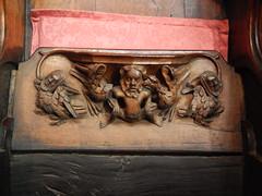 DSCN1902 (Richard Paul Carey) Tags: cathedral medieval carlisle misericords carvedwoodwork