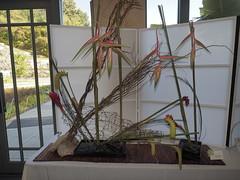 "Japanese Flower Arrangement by Verla Shaner ""Koryu School"" (nano.maus) Tags: lauritzengardens japaneseflowerarrangement omahabotanicalsociety japaneseambiencefestival"
