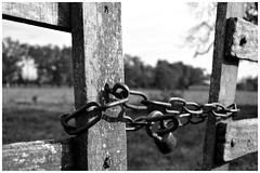 Prohibido (macarena.atauri) Tags: campo tranquera candado
