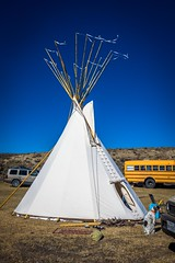 Some guys camping in the desert with their teepees and buses..