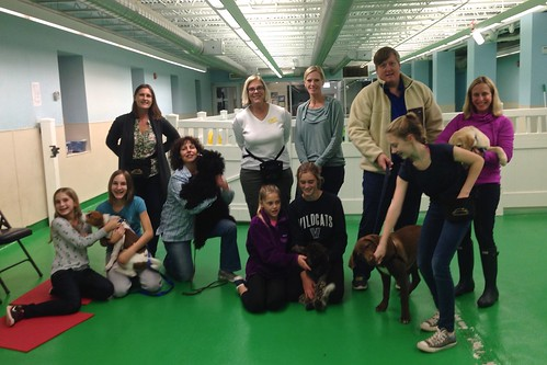 "Puppy Head Start, Session N, Fall 2015; Class Photo-02 • <a style=""font-size:0.8em;"" href=""http://www.flickr.com/photos/65918608@N08/22723456806/"" target=""_blank"">View on Flickr</a>"