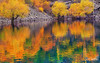Color's Abstract (SMBukhari) Tags: autumn pakistan colors autumnal colorsofnature skardu upperkachura kachuralake gilgitbaltistan syedmehdibukhari smbukhari