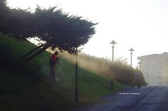 Summer morning in Bilbao (1/4) (Iker Merodio | Photography) Tags: park morning europa pentax country bilbao tamron bizkaia basque parke 70300 biscay k50 txurdinaga goiz