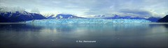 The Glacier Ending (Chloe File) Tags: blue light summer sky usa sun white snow cold love ice water beautiful up closeup alaska silver point boat long shoot waves close shot bright gorgeous smooth panoramic glacier clean clear iceberg lovely mountians lightblue 2015