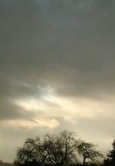 Ihr Himmel, preist und lobet Gott (amras_de) Tags: winter light luz licht vinter wiesbaden lumière hiver invierno luci lys inverno talvi zima lux luce solas lutz lumina llum vetur valo talv fény hivern ljus kis lumine isik wanter hiems iarna ljós swiatlo svetlo lig lumo argi valgus negu tél ziema žiema šviesa gaisma svjetlost liicht vintro hibierno svetloba geimhreadh ivèrn sylterstrase mmernu