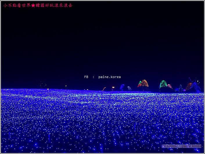 晨靜樹木園 五色星光庭園展 (24).JPG