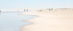 A summer's day at the Beach (loobyloo55) Tags: beach coast australia highkey