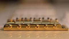 golden screws (Role Bigler) Tags: bridge canonef28100islmacro canoneos5dsr gitarre gold guitar macro stratocaster bokeh bokehlicious fender goldhardware goldstrings goldenbokeh guitarparts manfrottotripod optimastrings part tremolo vibrato vintagestratocaster