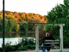 GAZING AT FALL COLOR ON A SWINGING BENCH (Visual Images1) Tags: hbm benchmonday fall autumn color susquehannariver owego newyork