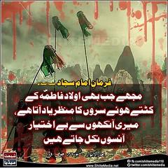 ( )                          -     (ShiiteMedia) Tags: muharam 1438 ashura shia shiite media killing genocide news urdu      channel q12