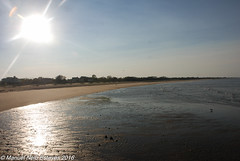 2016.10.18; Bayshore Waterfront Park-6 (FOTOGRAFIA.Nelo.Esteves) Tags: 2016 neloesteves nikon d80 usa us nj newjersey monmouthcounty bayshore waterfront park raritan sandy hook bay nyc marina