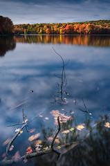 Autumn Layers (crmanski) Tags: crescentlake landscape southingtonct foliage longexposure