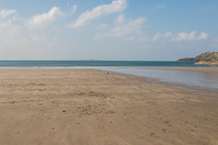 Dog on a beach ! (DP the snapper) Tags: turbo whitesandsbay pembrokeshire beach sea