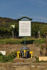 sDSC_0036 (L.Karnas) Tags: wien vienna wiede    viena vienne autumn austria sterreich herbst 2016 weinwandertag wein wander tag wanderung wine wandering neustift am walde