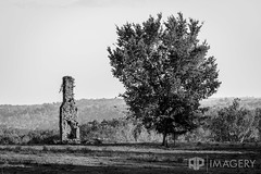 Lone Chimney (AP Imagery) Tags: gone forgotten decay abandoned old kentucky fallen bw chimney rural blackandwhite monochrome tree usa