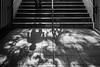 Downstairs (John St John Photography) Tags: streetphotography candidphotography downstairs 81ststsubwaystation ctrain mta newyorkcity newyork stairs man shadow shadows centralpark centralparkwest peopleofnewyork museumofnatruralhistory blackandwhite blackwhite bw