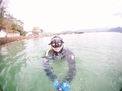 GOPR5910 (ambrogi_taubate) Tags: naturezaselvagem marinha mergulhando ubatuba sp brasil naturezamarinha fantstica apneia 10m setembro primavera 2016