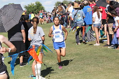 State XC 2016 1841 (Az Skies Photography) Tags: div division iv girls divgirls divisionivgirls divgirlsrace divisionivgirlsrace aia state cross country meet aiastatecrosscountrymeet statemeet crosscountry crosscountrymeet november 5 2016 november52016 1152016 11516 canon eos rebel t2i canoneosrebelt2i eosrebelt2i run runner runners running action sport sports high school xc highschool highschoolxc highschoolcrosscountry championship championshiprace statechampionshiprace statexcchampionshiprace races racers racing