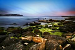 Bondi, NSW (djshanu) Tags: bondi nsw sydney seabeach sea ocean