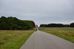 Dyrehaven (osto) Tags: osto osto denmark sony scandinavia europa zealand october2016 danmark sjlland europe alpha77 a77 slt